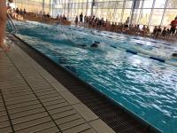 180302_schwimmen4